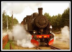 Brsarp (*Kicki*) Tags: summer sepia train skne minolta sweden railway august steam cc creativecommons dynax7d 7d konica sverige dynax 2007 sommar konicaminolta sterlen tg kicki jrnvg brsarp konicaminoltadynax7d nglok nga llovemypic svenskaamatrfotografer kh67