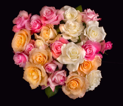 Rose Bouquet from Above