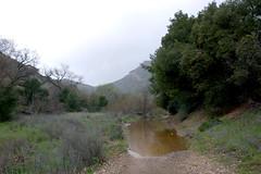 Trail underwater