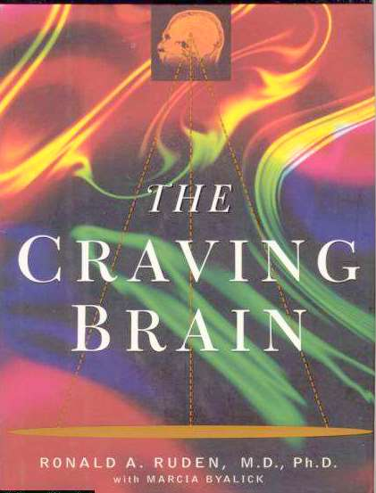 The Craving Brain~