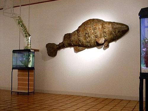 Interesting Aquarium