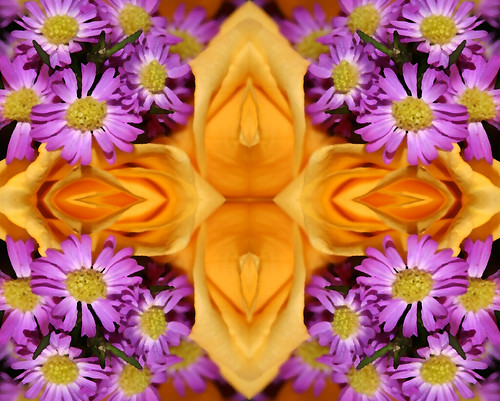 A Quilt of Living Yellow Roses & Purple Daisies