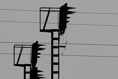 black & grey (daCityDrifter) Tags: black berlin art train germany deutschland photography grey europa europe fotografie kunst vivid grau bahn schwarz blueribbonwinner supershot abigfave platinumphoto overtheexcellence goldstaraward dacitydrifter