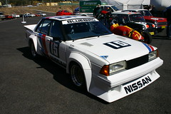 Bathurst Race Nissan Bluebird