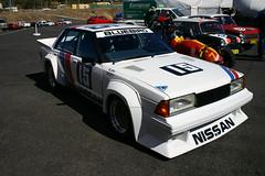 Bathurst Race Nissan Bluebird