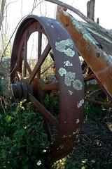 old steel wheel (Chook with the looks) Tags: old wagon remains wagonwheel steelwheel photofaceoffwinner pfogold