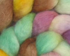 Handspun yarn or fiber... Your choice!  Masquerade on BFL - 4 oz (WW)
