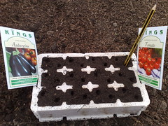 Todays sowing