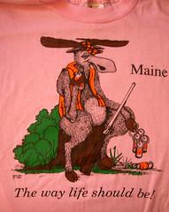 Maine6