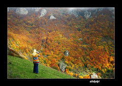 ( Ali Shokri / www.alishokri.com) Tags: autumn mountain mountains fall nature colors beautiful landscape bravo perfect searchthebest quality azerbaijan loveit just excellent 2008 photoart soe 07 natures watcher  themoulinrouge  naturesfinest goldenglobe blueribbonwinner firstquality supershot outstandingshots flickrsbest utatafeature abigfave shieldofexcellence platinumphoto anawesomeshot superaplus aplusphoto ultimateshot superbmasterpiece infinestyle favemegroup4 diamondclassphotographer flickrdiamond megashot allin1 bratanesque ysplix amazingamateur excellentphotographerawards superlativas theunforgettablepictures onlythebestare eliteimages naturewatcher colourartaward excapture flickrslegend betterthangood theperfectphotographer goldstaraward ostrellina picswithsoul showmeyourqualitypixels wwwalishokricom alishokri