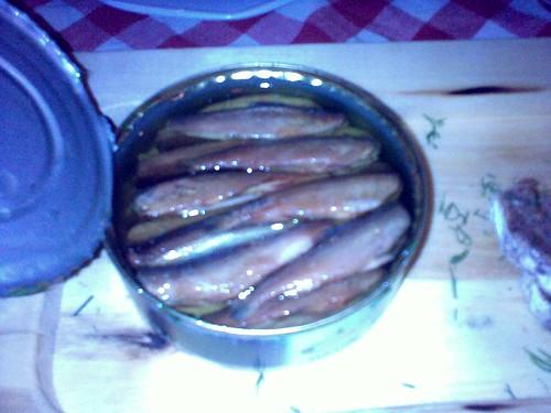 Vendace fish