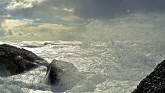 Afternoon Wave Spray (sswj) Tags: pacific ocean pacificocean wave spray wavespray afternoon beanhollowbeach sanmateocounty northerncalifornia california availablelight naturallight exustunglight aperture composition oceanlight beach coast pacificcoast scottjohnson leicadlux4 seascape beautifullight dramatic water scape surf breakingsurf