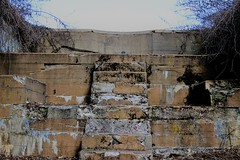 (taradonnelly1) Tags: outdoor statenisland fortwadsworth steps bricks