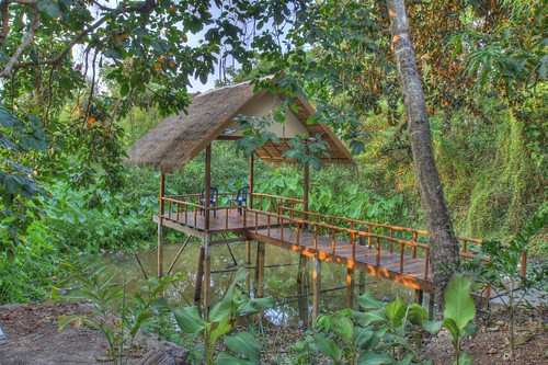 Isara's Jungle Oasis in HDR