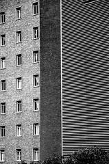 (Robbi Hner) Tags: blackandwhite building blackwhite streetphotography bianconero johannesburg biancoenero bnarchitettura bncitt robbihuner