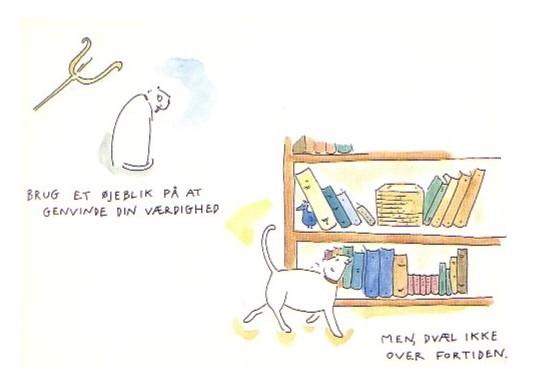 Lær af din kat