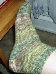 Step_Socks