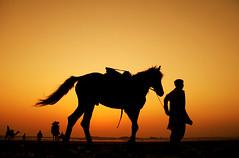 going home (!!sahrizvi!!) Tags: pakistan beautiful silhouette soe rizvi sahrizvi sarizvi golddragon mywinners aplusphoto diamondclassphotographer flickrdiamond theunforgettablepictures