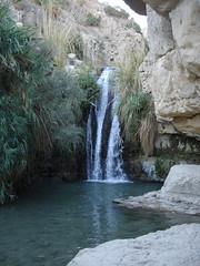 Nahal David (En Gedi) Israel