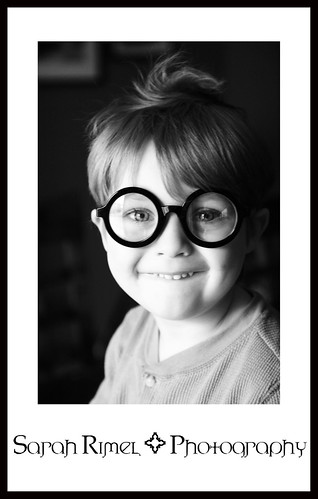 web Maddox Potter