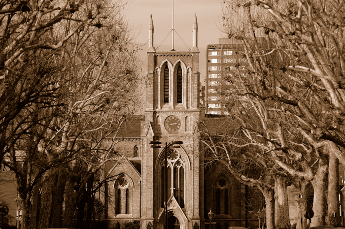 St James's Garden :: Click for Previous