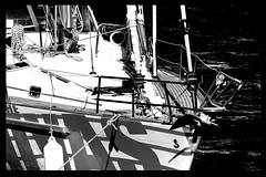 Mare Nostrum #4 - Navegar (RiCArdO JorGe FidALGo) Tags: bw portugal water gua boat barco sailing ship sony pb soe cascais navio veleiro blueribbonwinner supershot flickrsbest dsch2 marinadecascais platinumphoto flickrplatinum irresistiblebeauty superbmasterpiece wowiekazowie fidalgo72 theperfectphotographer bwartaward goldstaraward ricardofidalgo ricardofidalgoakafidalgo72