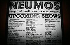 Neumos W/ Blush, Avett Brothers, and The Raconteurs (Blush Photo) Tags: music neumos mcleod
