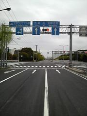 休日の大井埠頭の道路