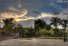 Himmel ber gypten (HDR) (Lars Tinner) Tags: africa sky clouds palms pflanzen egypt himmel wolken palm cairo egipto gypten hdr egipte palmen kairo elcairo gyptenegypt elcaire wwwtinnersg hiltondreamlandgolfresort httpwwwtinnersg tinnersg