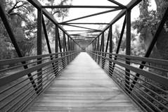 46/365 - Vanishing (JDM Photography) Tags: bridge blackandwhite lines architecture vanishingpoint colorado fortcollins zigzag poudreriver project365