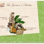 Le café, jasmin d'Arabie (MuCEM) thumbnail
