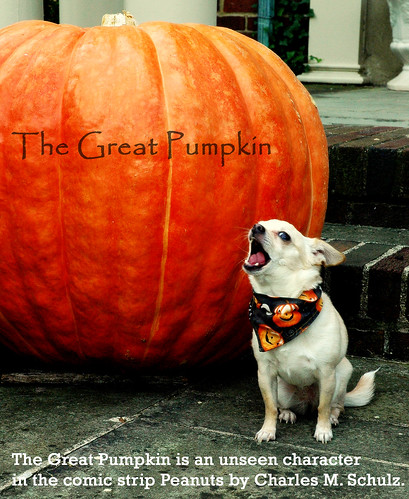 ~The GREAT PUMPKIN por *ojoyous1*