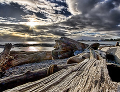 Driftwood and Winter Sky (DARREN ST0NE) Tags: ocean winter sky sun clouds bay ross bc pacific columbia victoria driftwood british sescape darrenstone lightgazer diamondclassphotographer flickrdiamond