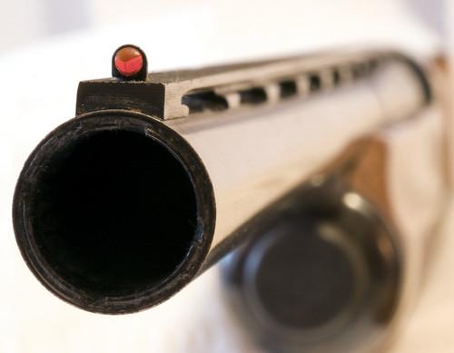 Beretta A303 Shotgun