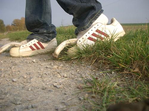 Adidas Superstar No Laces