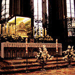 Shrine of the Three Kings on Epiphany thumbnail