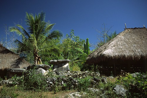 Sumba (Indonesia) - Traditional village 2