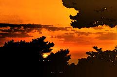 The last sunset (italianoadoravel .BACK ,,,,,,,,,,,,) Tags: sky flower window southamerica sunrise landscape colorful sweden retrato vivid doorway stunning litoral soe topic 5star potions orangeandblue singintheblues tinctures supershot topshots 5photosaday passionphotography abigfave platinumphoto impressedbeauty superbmasterpiece travelerphotos diamondclassphotographer flickrdiamond megashot ysplix superlativas theunforgettablepictures onlythebestare coloursplosion goldstaraward clevercreativecaptures landscapesdreams unlimitedphotos worldtrekker overtheshot llovemypics flickrlovers peachofashot saariysqualitypictures