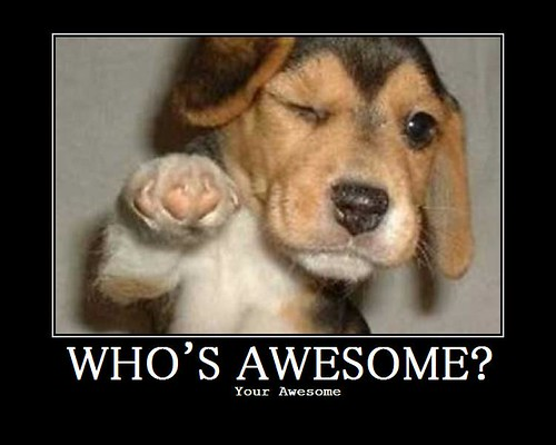 Who's-Awesome