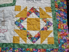 Cat quilt detail (Pieced block)