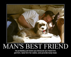 32.365 - Man's best friend