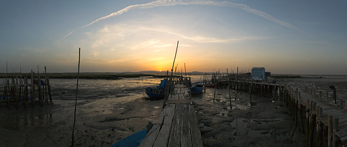 Low tide at Carrasqueira wharf piles V
