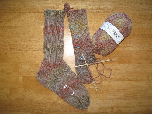 Encore colorspun socks