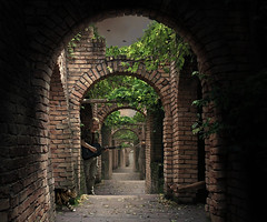 Luring Dreams (Mattijn) Tags: music apple cat alley guitar dream arches photomontage pino mattijn amersfoort anideg flylamp luring dierenparkamersfoort bookofdreams