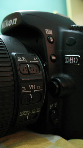 More Nikon D80 Switches