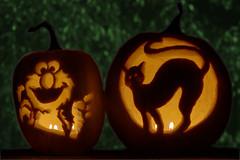 Jack-O-Lanterns (Sledgeweb) Tags: fall halloween blackcat d50 jack fun jackolantern trickortreat elmo pumpkins lanterns jackolanterns afnikkor50mm118d