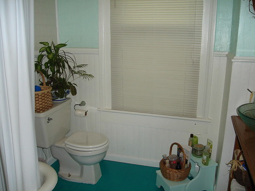 Bathroom complete window view