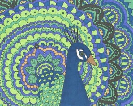 Peacock Print - 8x10