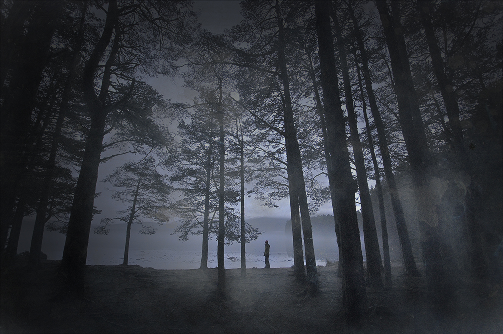 Loch Garten Misty
