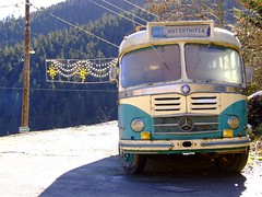 Bus at the end ... The end (...) Tags: old bus green sunshine forest mercedes vilage aplusphoto